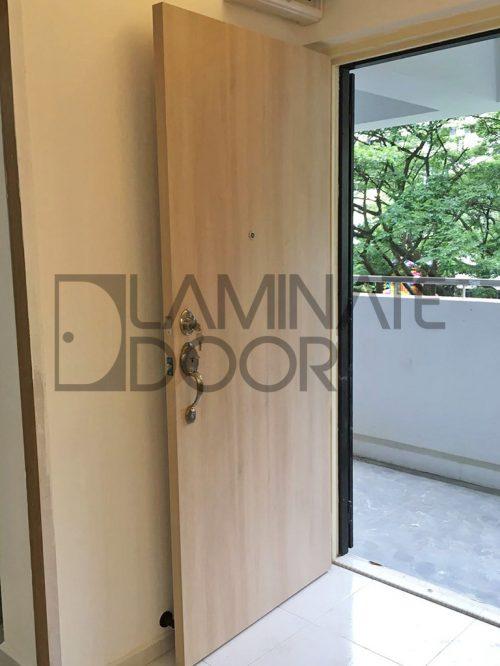 Veneer Main Door Single Leaf